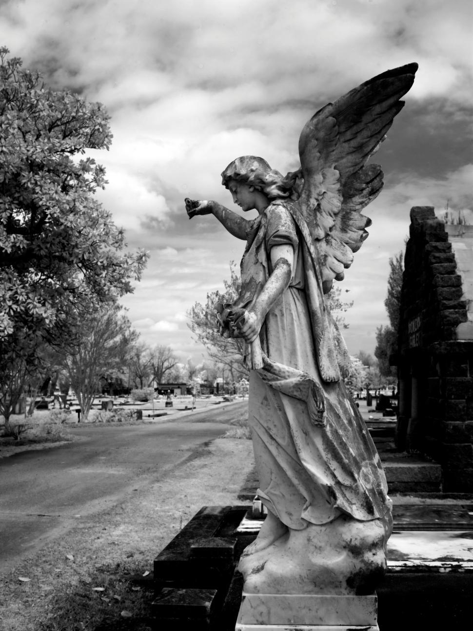 Download Free Stock Photo of Angel Statue - B&W
