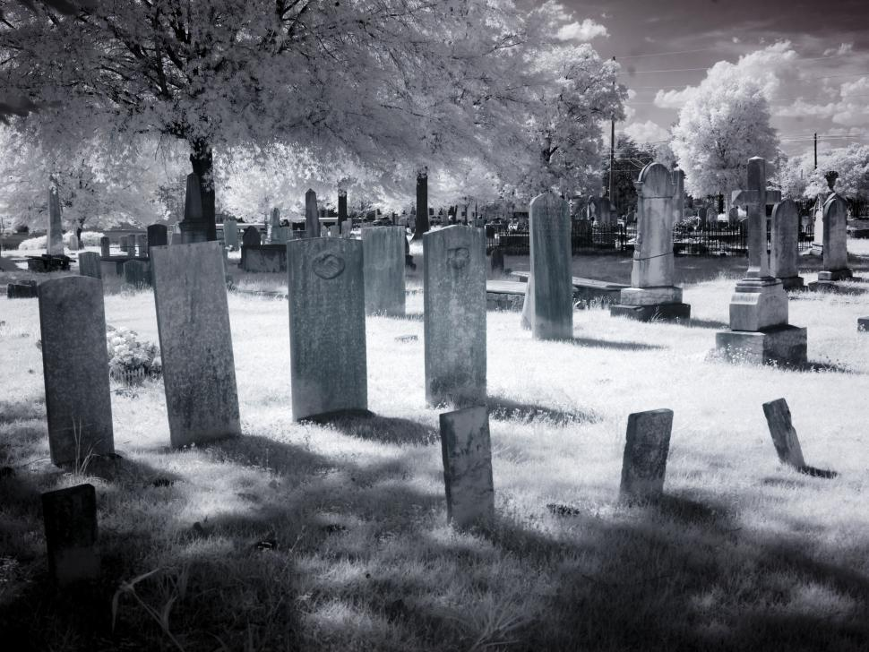 Download Free Stock Photo of Graveyard