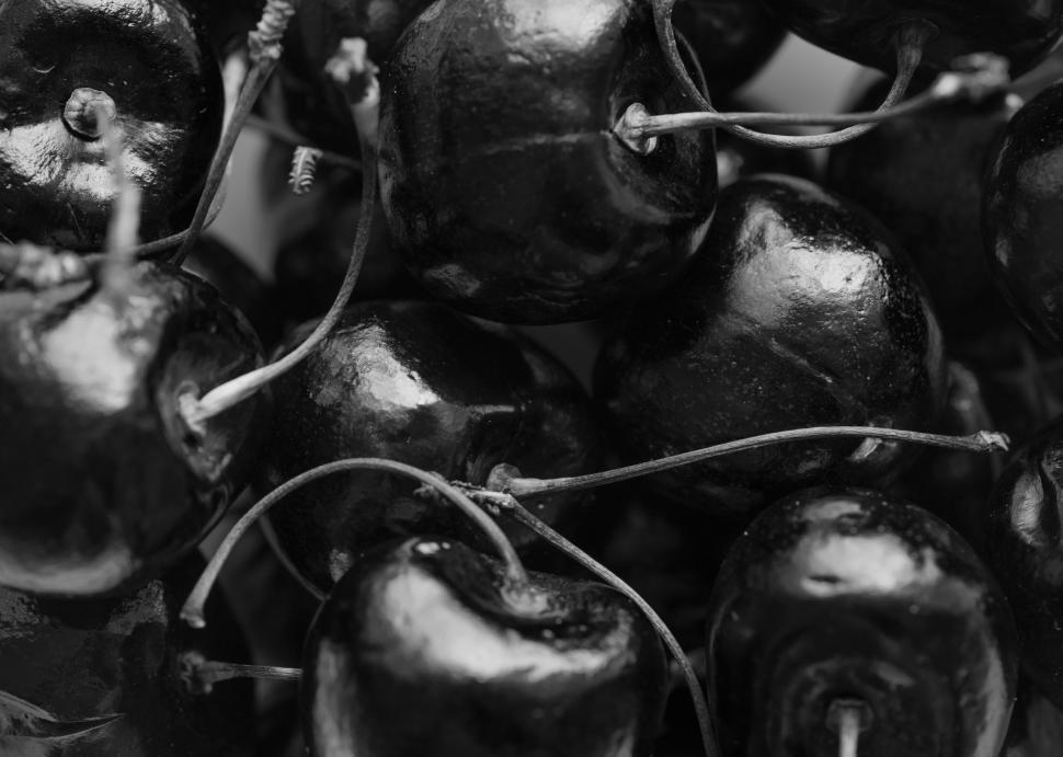 Download Free Stock HD Photo of Black and white - dark cherries with stalks Online