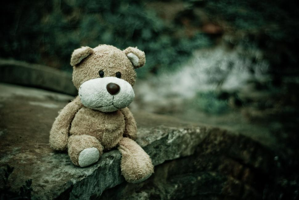 Download Free Stock Photo of Teddy Bear