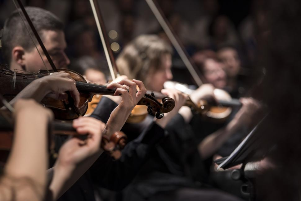 Download Free Stock Photo of Performance of violinists
