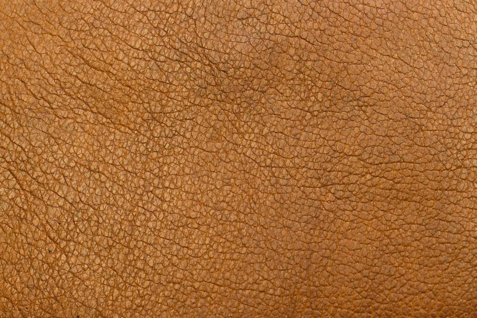 Download Free Stock Photo of Brown Leather