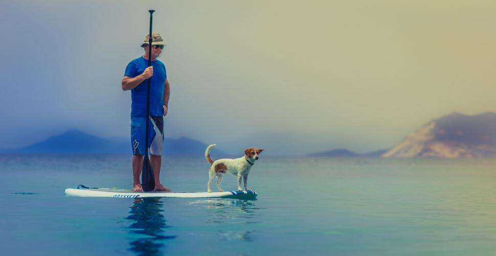 Download Free Stock Photo of Stand up paddling with dog