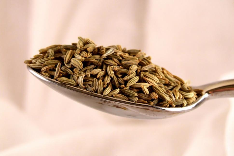 Download Free Stock Photo of Spice of Life/Fennel Seeds