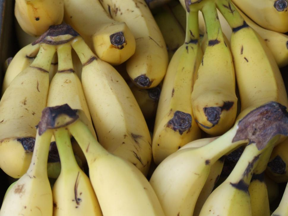 Download Free Stock HD Photo of Farmers Market - Bananas Online