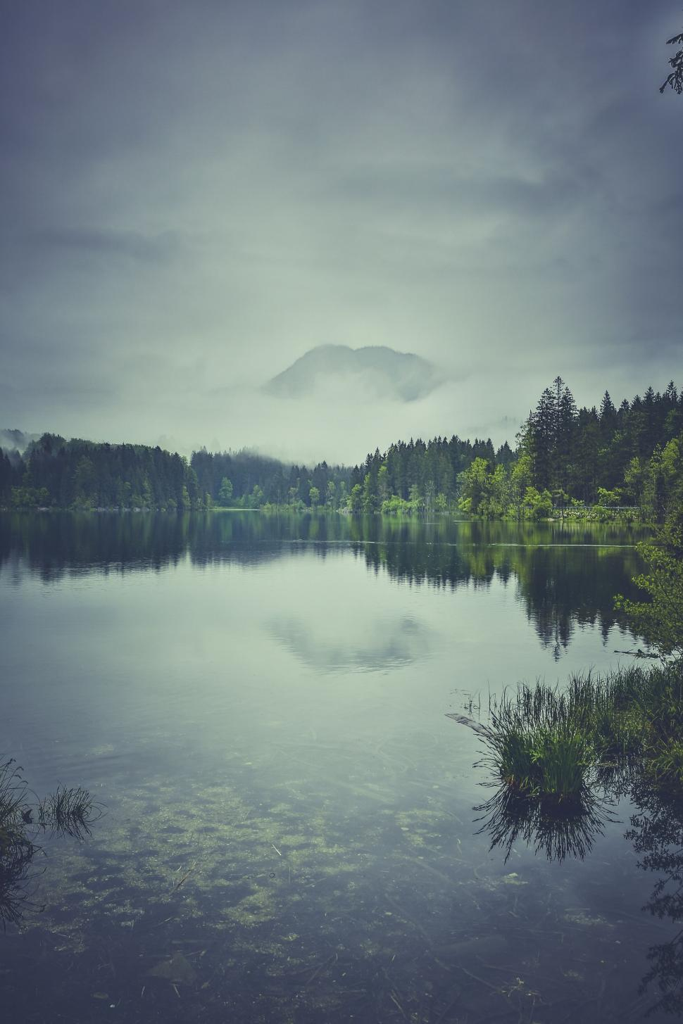 Download Free Stock Photo of Lake with Reflection of Trees