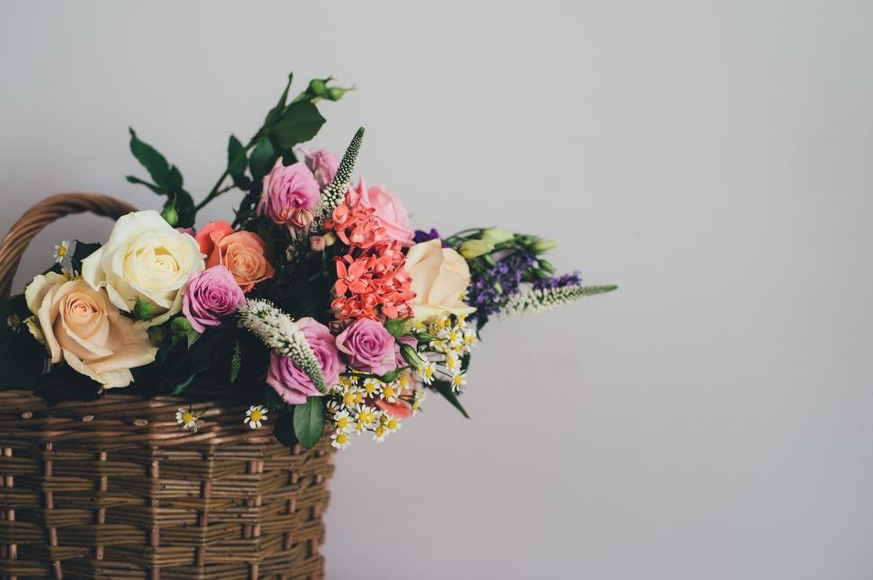 Download Free Stock Photo of Flower Bouquet