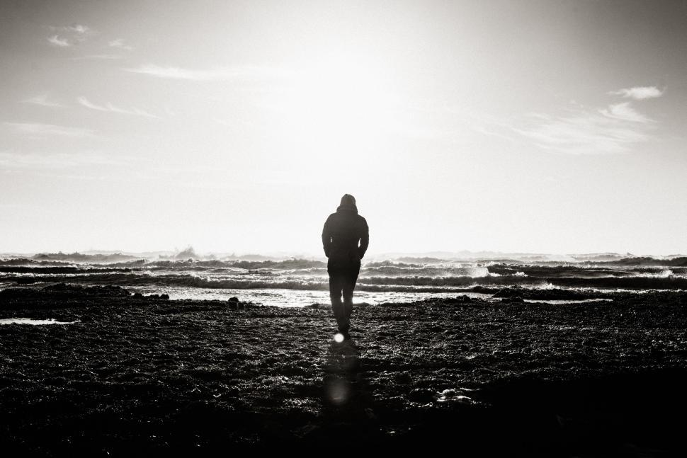 Download Free Stock Photo of Back Side view of man at beach