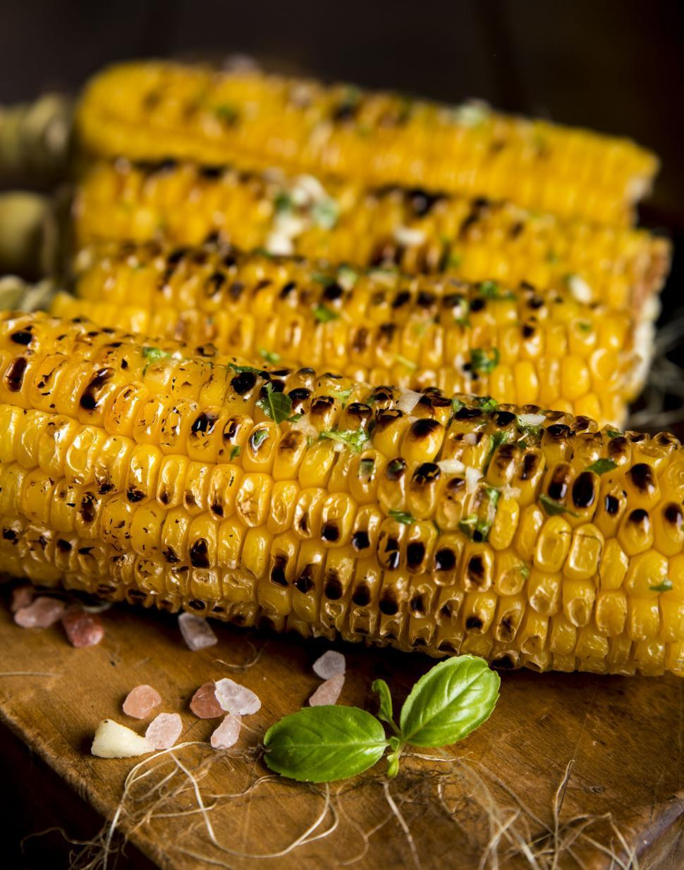 Download Free Stock HD Photo of Grilled corn Online