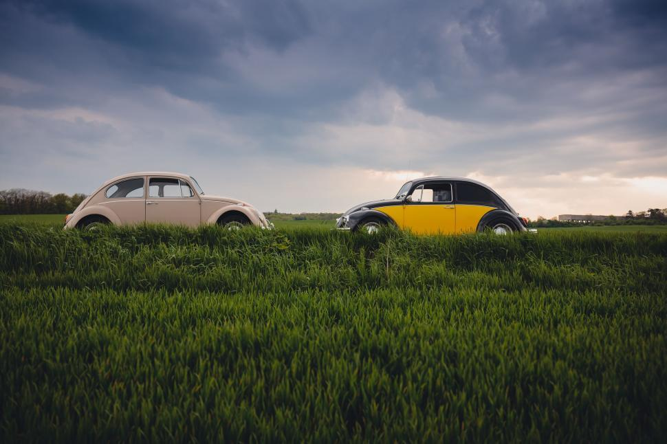 Download Free Stock Photo of Two Beetle Cars