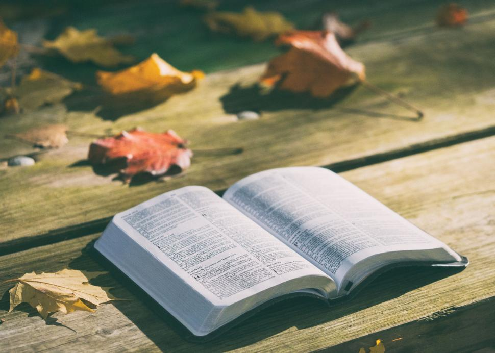 Download Free Stock Photo of Open Bible Book on Wooden Bench