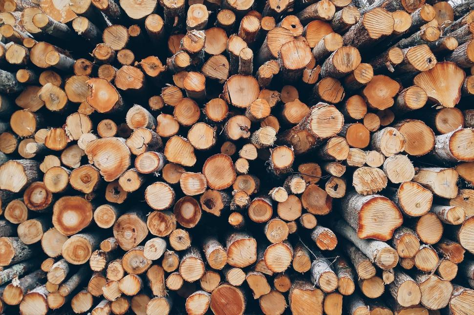 Download Free Stock Photo of Wood Logs - Background