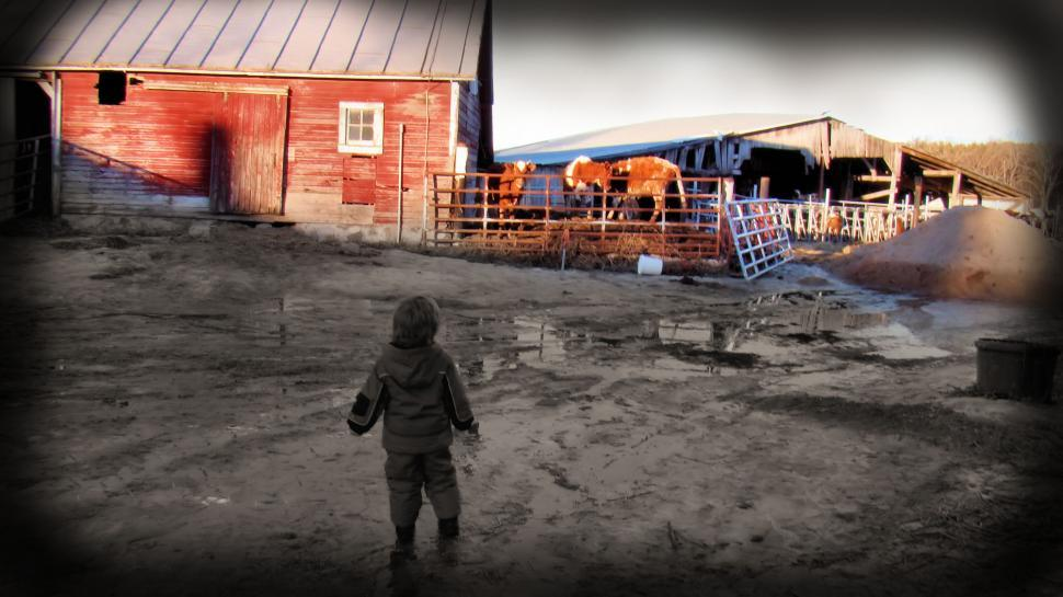 Download Free Stock HD Photo of A Boy and a Farm Online