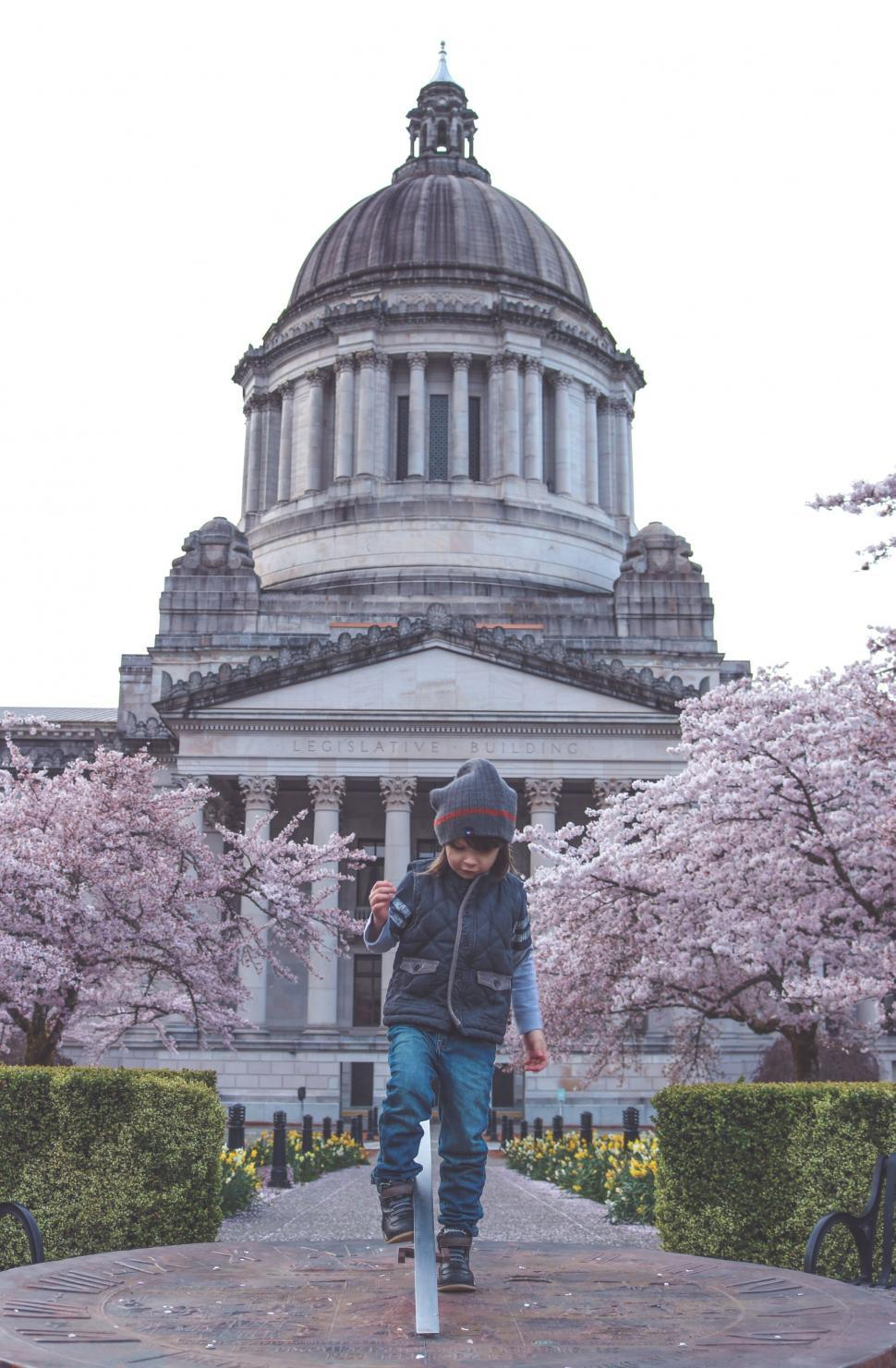 Download Free Stock Photo of Little Boy and Washington State Capitol Building With Cherry Blossom