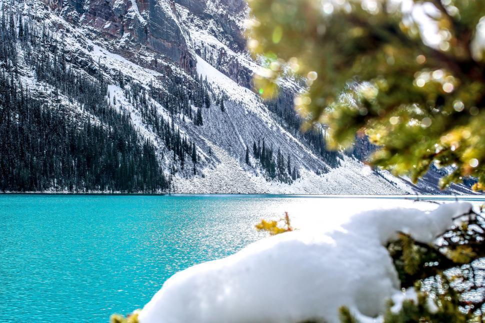 Download Free Stock Photo of Lake Louise - Alberta, Canada