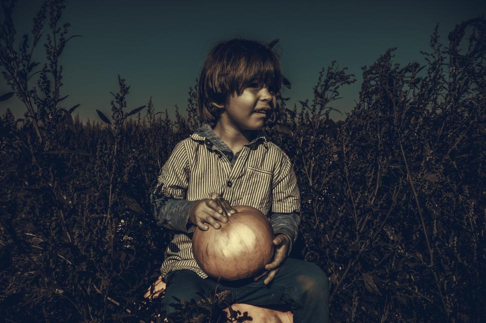 Download Free Stock Photo of Little Boy with pumpkin - looking away