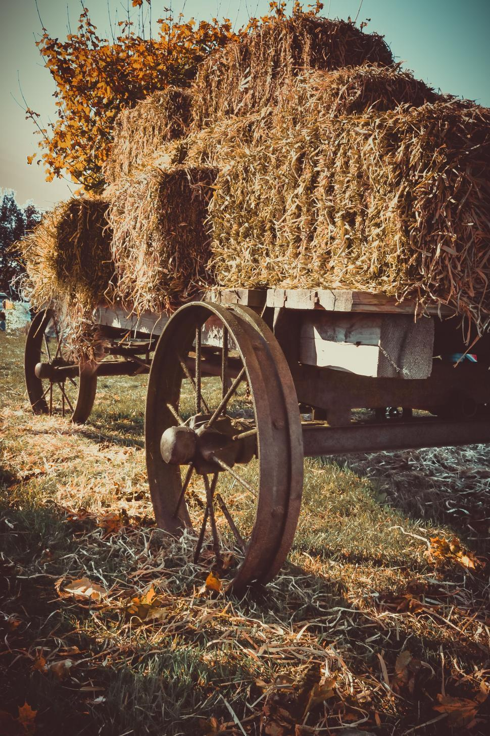 Download Free Stock Photo of Hay bales