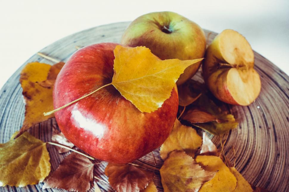 Download Free Stock Photo of Red Apples and Leaves