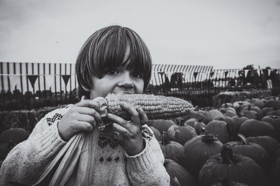 Download Free Stock Photo of Little Boy eating corn at outdoor farmers market