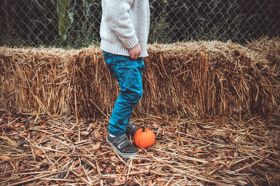 Download Free Stock Photo of Little Boy and Pumpkin with Hay