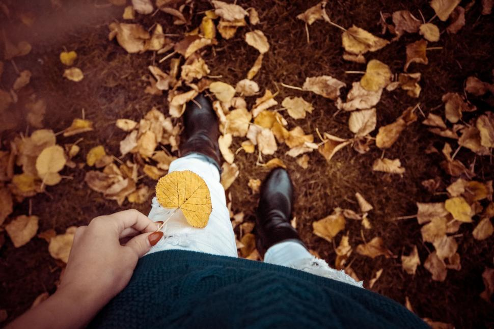 Download Free Stock Photo of Autumn Leaves And Woman