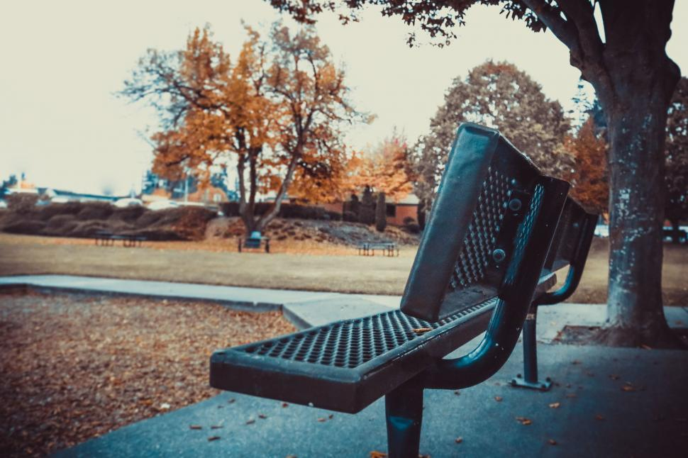 Download Free Stock Photo of Iron Bench and Autumn Trees
