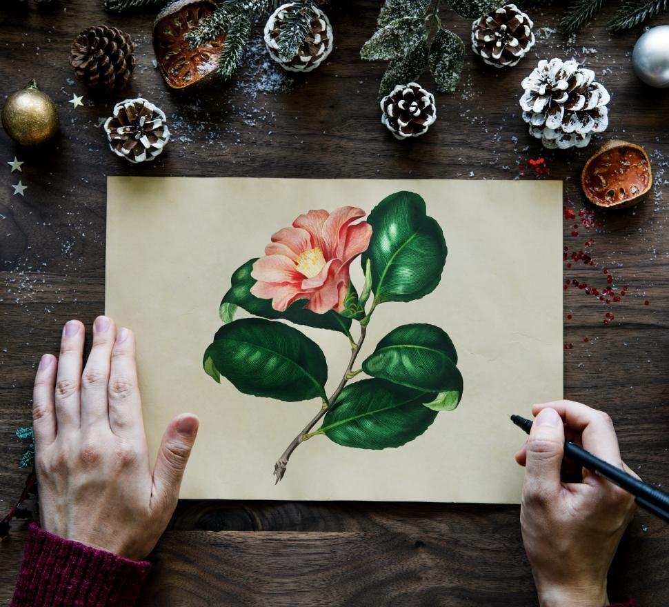 Download Free Stock Photo of Overhead view of a person drawing a floral picture