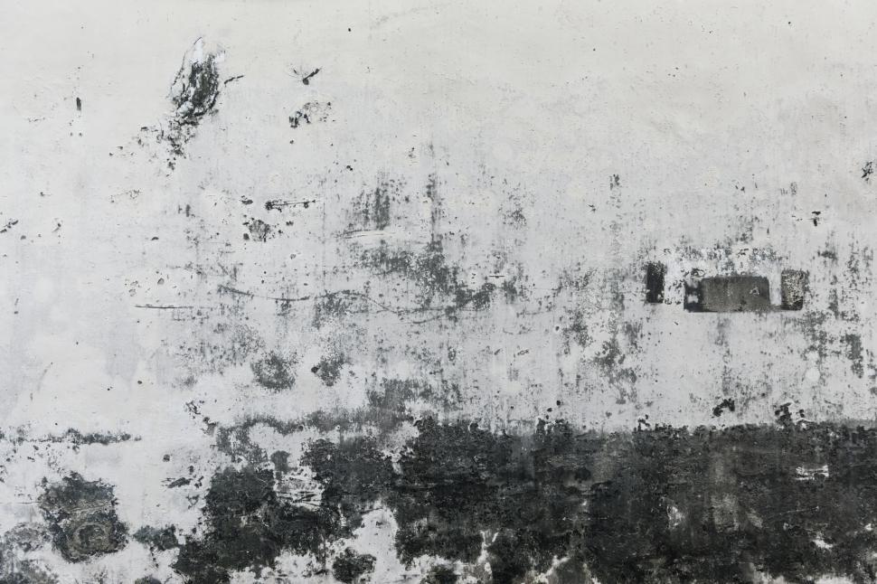 Download Free Stock Photo of Grey and white paint weathered texture