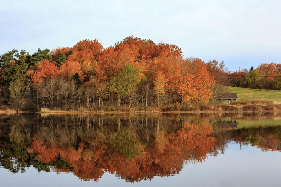 Download Free Stock Photo of Autumn reflection