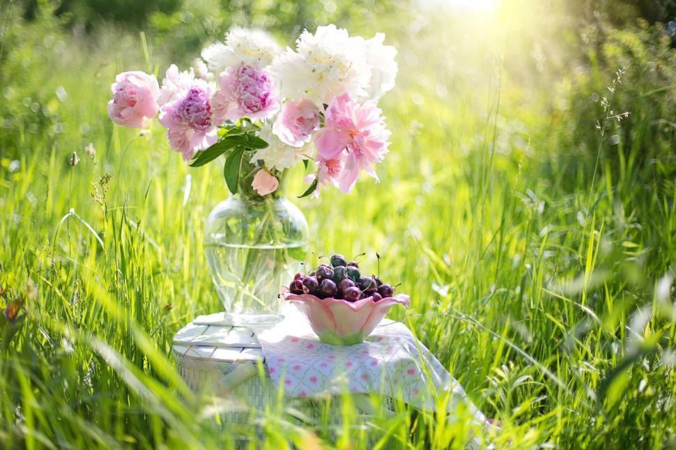 Download Free Stock HD Photo of Peony Flowers and Cherries placed on basket  Online