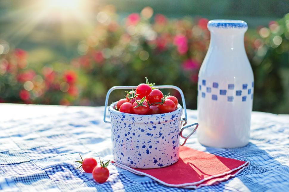 Download Free Stock Photo of Cherry Tomatoes and milk bottle