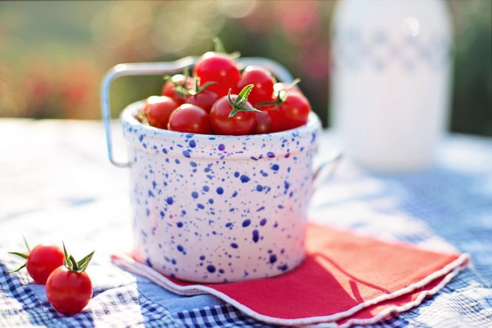 Download Free Stock Photo of Cherry Tomatoes