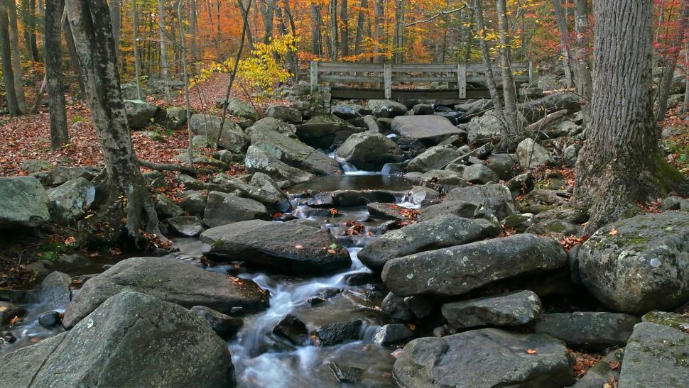 Download Free Stock Photo of Wooden Footbridge Crossing Brook with Boulders