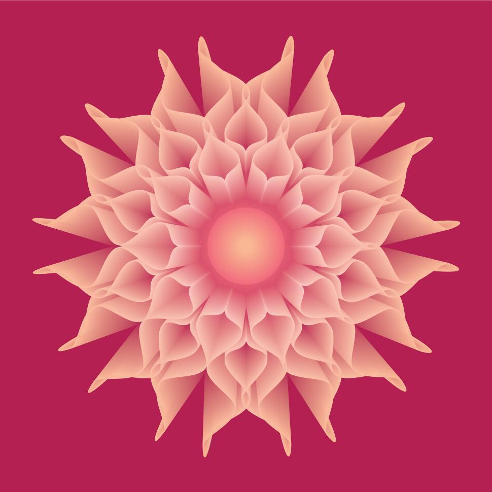 Download Free Stock Photo of A digital vector flower design Flower