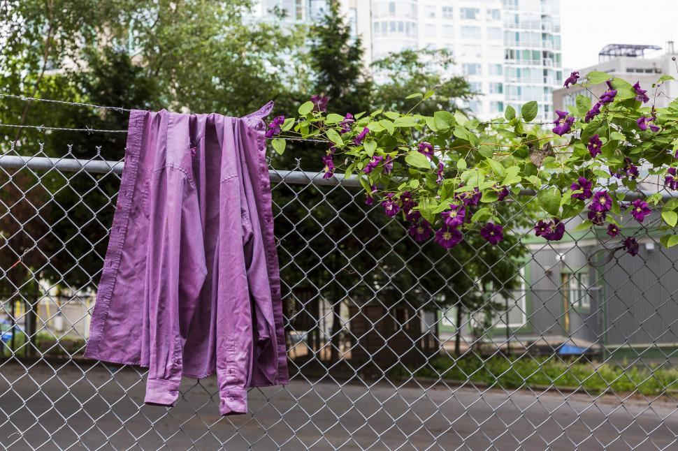 Download Free Stock Photo of Shirt on a fence