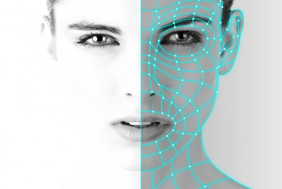 Download Free Stock Photo of Authentication - Biometric Recognition - Woman - Facial Recognit