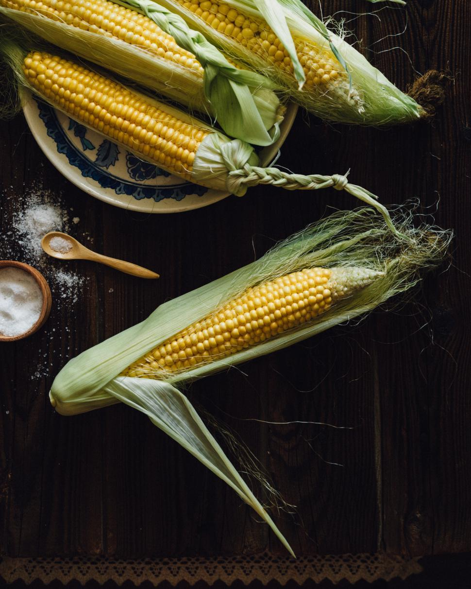 Download Free Stock Photo of Overhead view of corn cobs