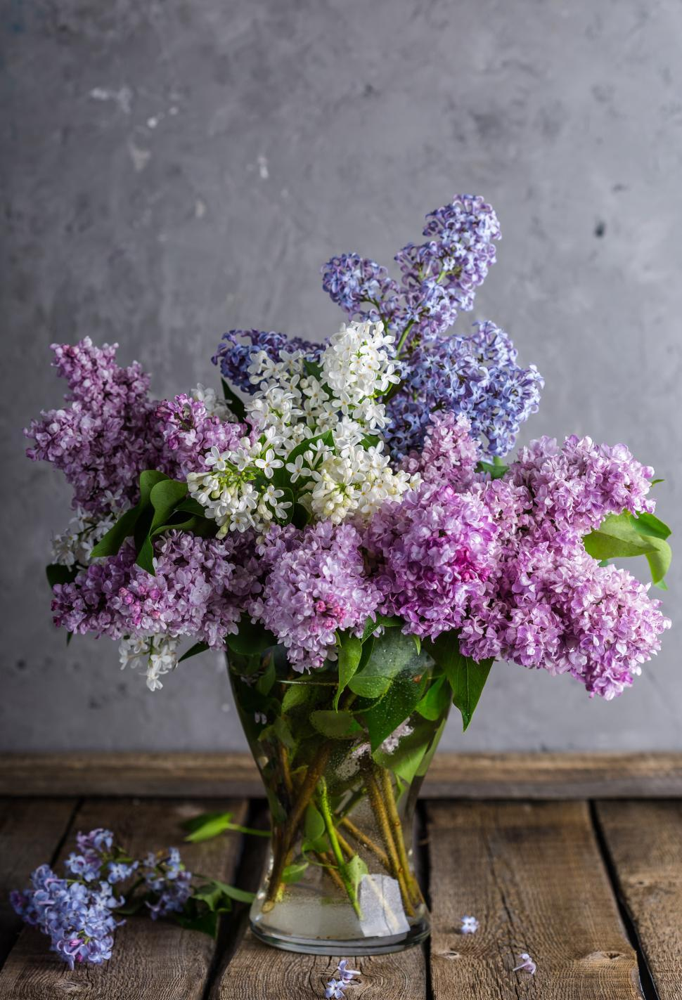 Download Free Stock HD Photo of Close up of Lilac flowers in a glass vase Online