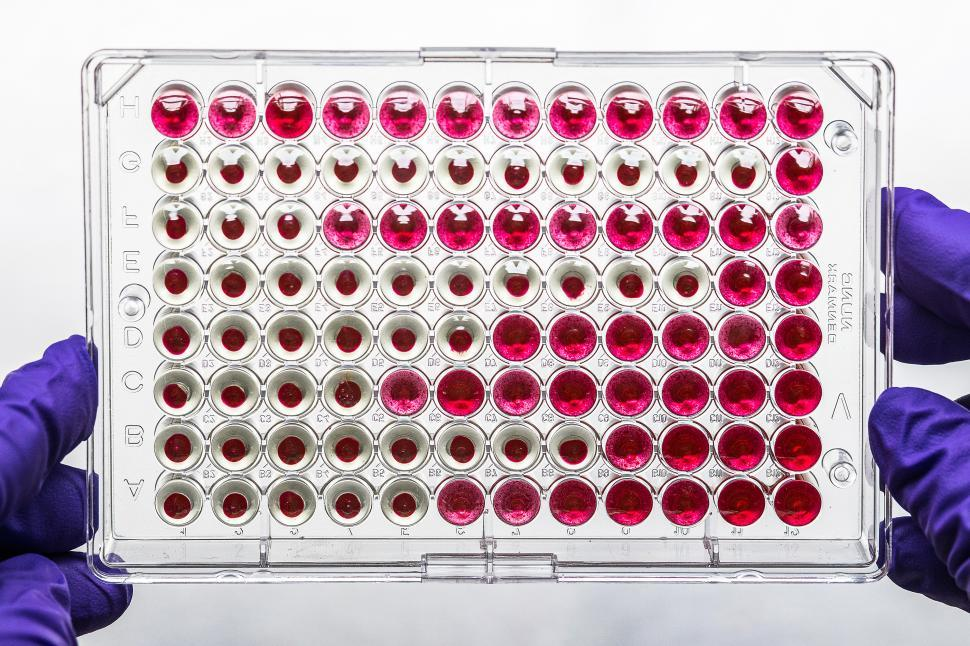 Download Free Stock Photo of Microtiter plate