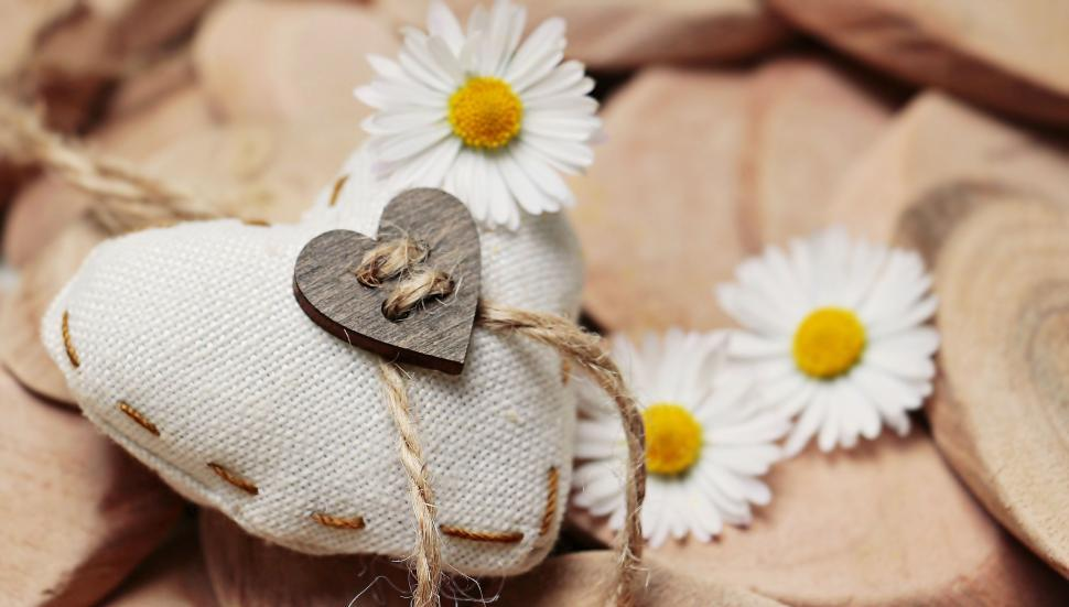 Download Free Stock Photo of Wooden Heart with Daisy flowers