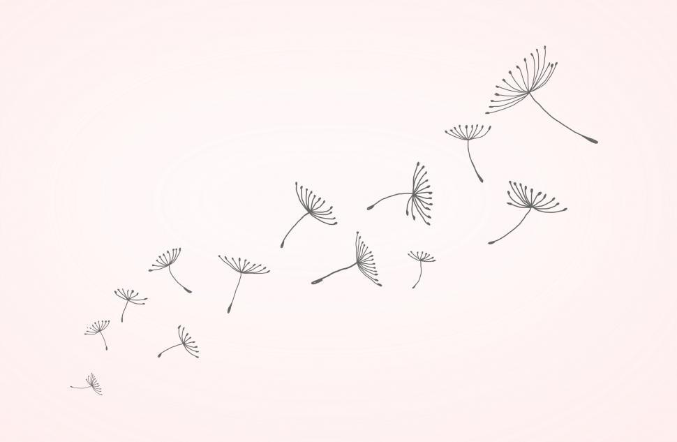 Download Free Stock Photo of Dandelion Seeds in the Wind - Flying Away