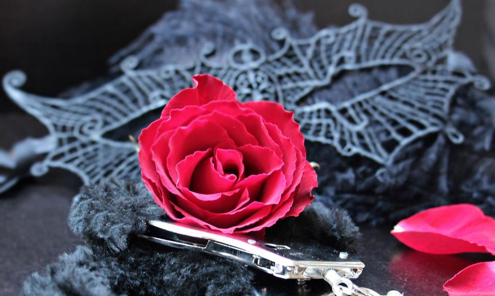Download Free Stock HD Photo of Black mask with roses and handcuffs Online