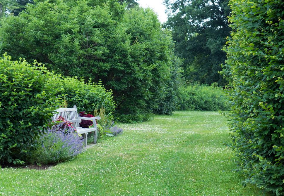 Download Free Stock HD Photo of Bench on Garden Lawn Online
