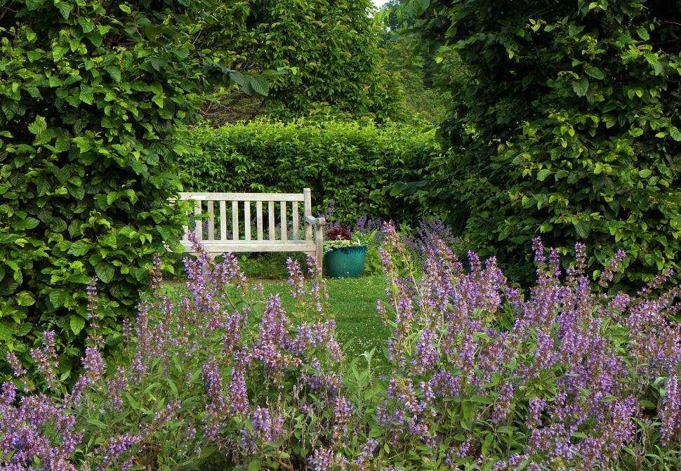Download Free Stock HD Photo of Serene Garden  Online