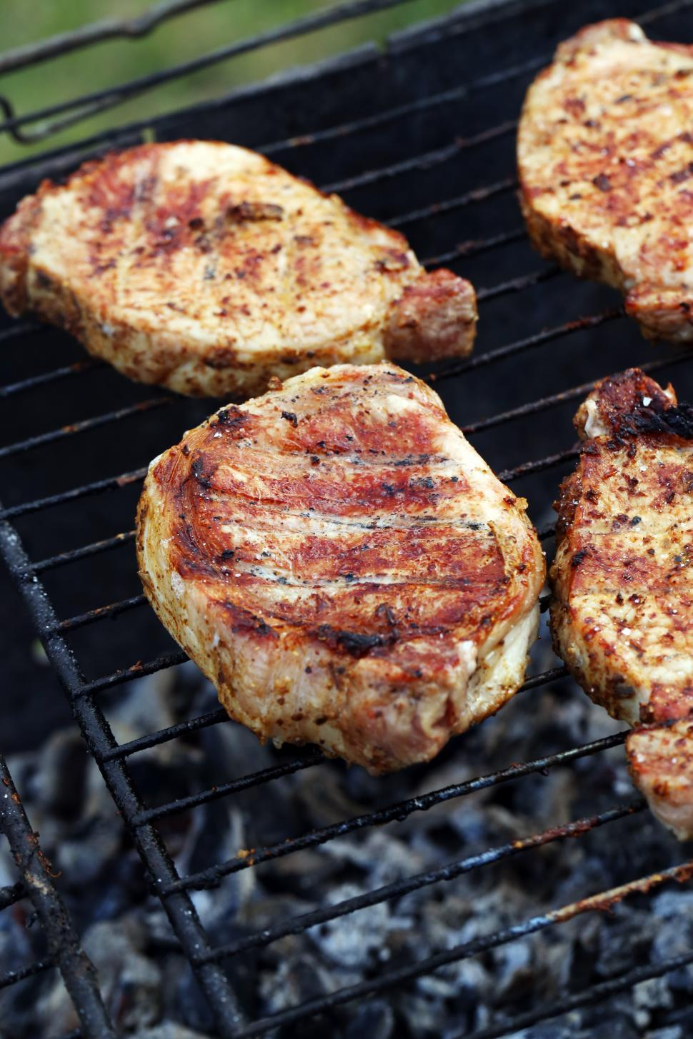 Download Free Stock HD Photo of Outdoor. Delicious barbeque Online