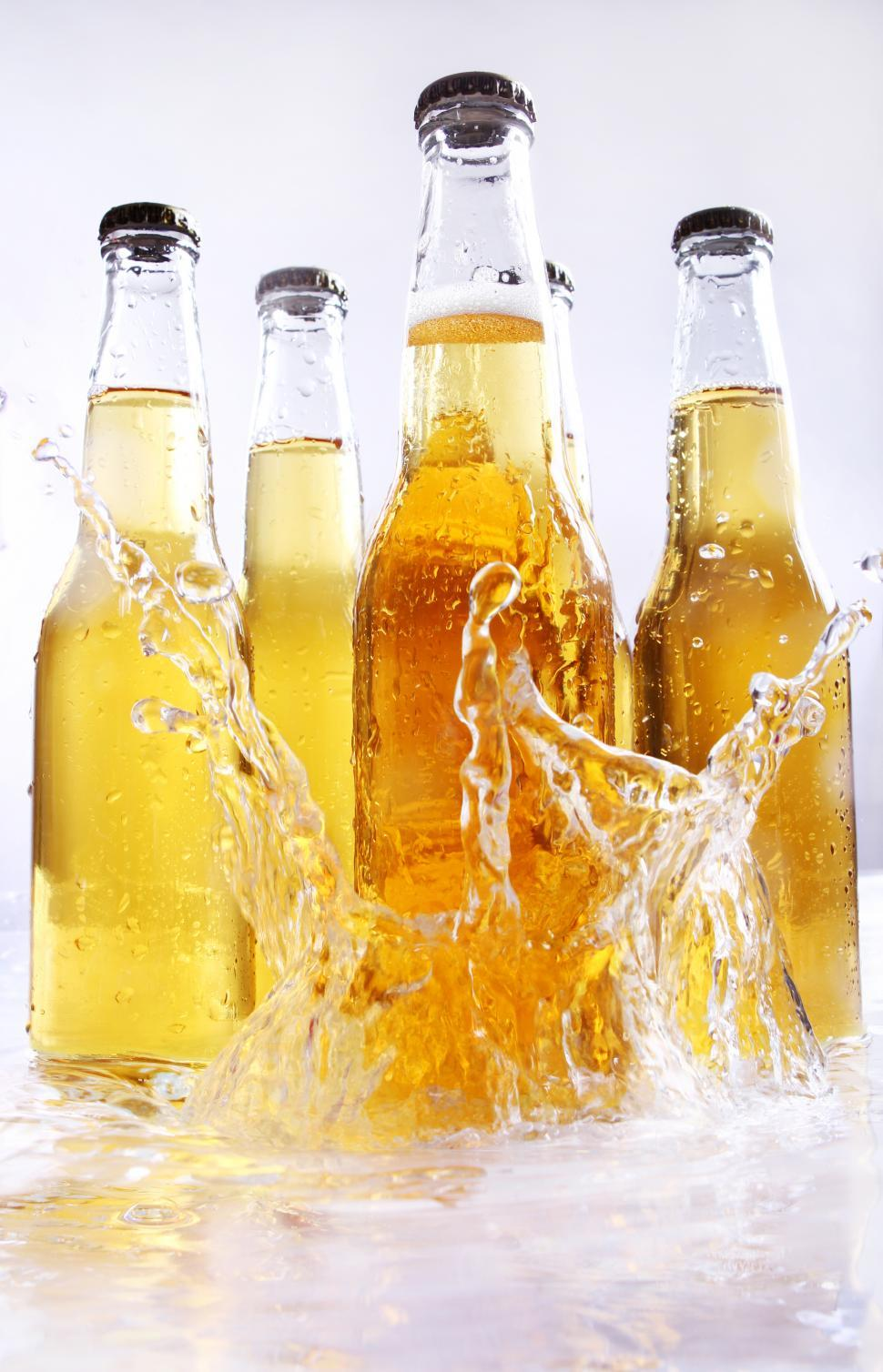 Download Free Stock Photo of Bottles of beer with water splashes
