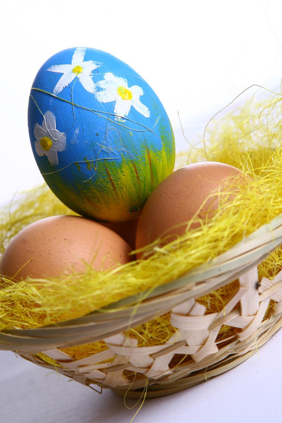 Download Free Stock Photo of One painted colored easter egg in basket