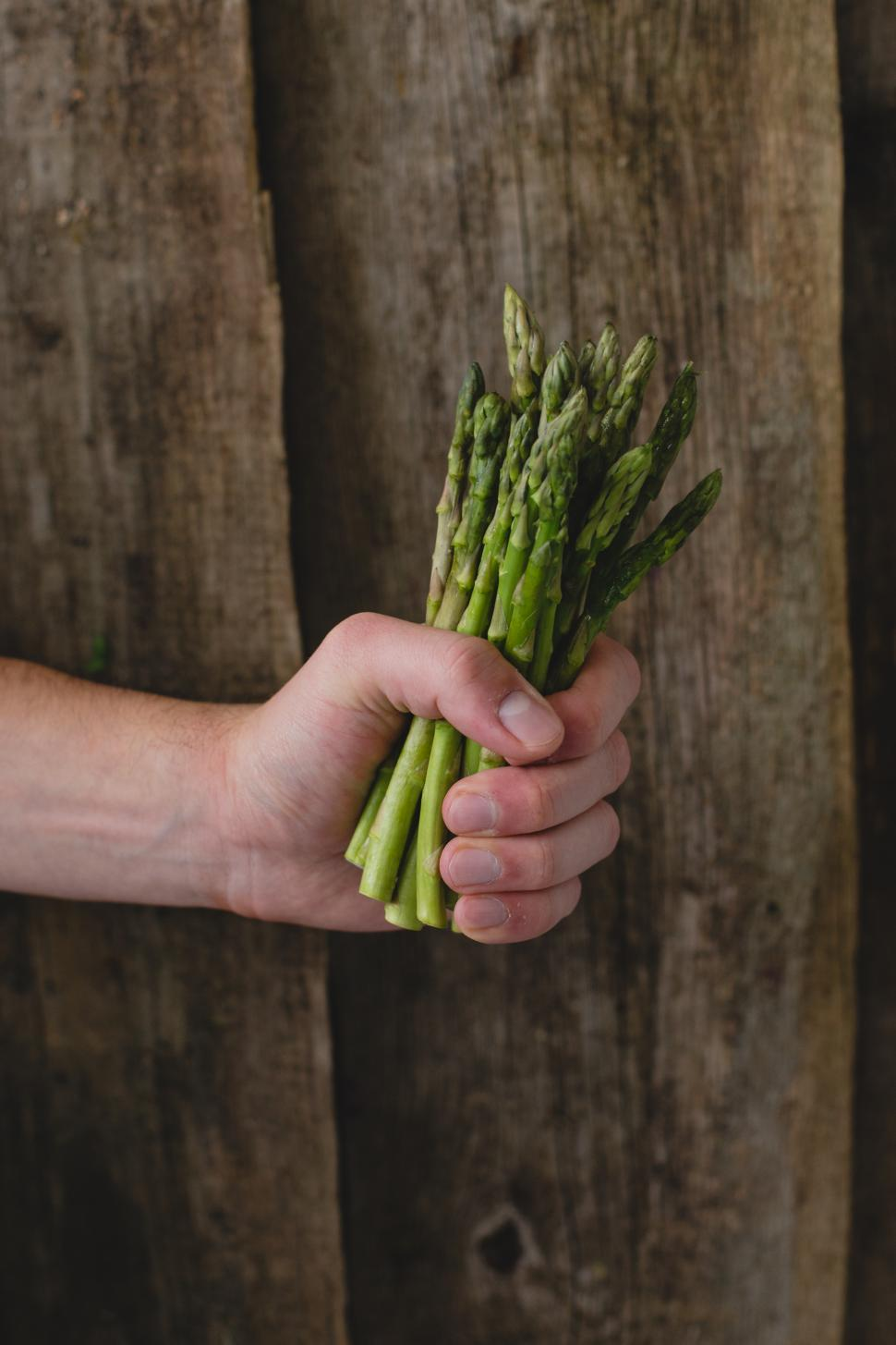 Download Free Stock HD Photo of Man holding asparagus Online