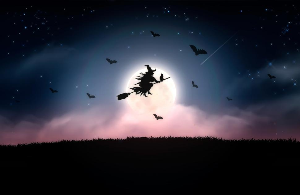 Download Free Stock Photo of Witch and Bats Flying at Night - Halloween