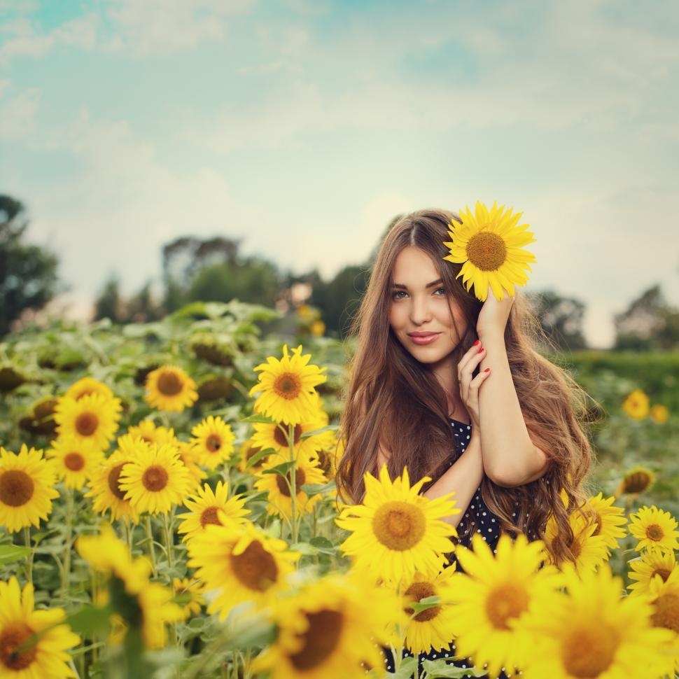 Download Free Stock Photo of Young woman in field of sunflowers